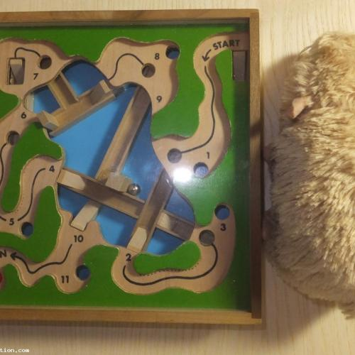 One large format Wooden Dexerity Game by WADA  (Lot 10)